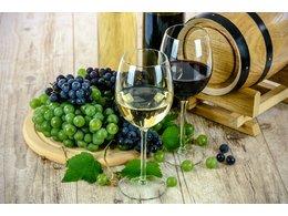 Další nová a krásná vína